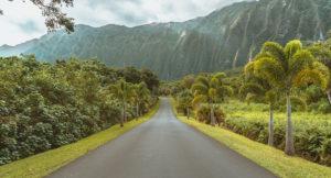 Should You Rent a Car in Honolulu