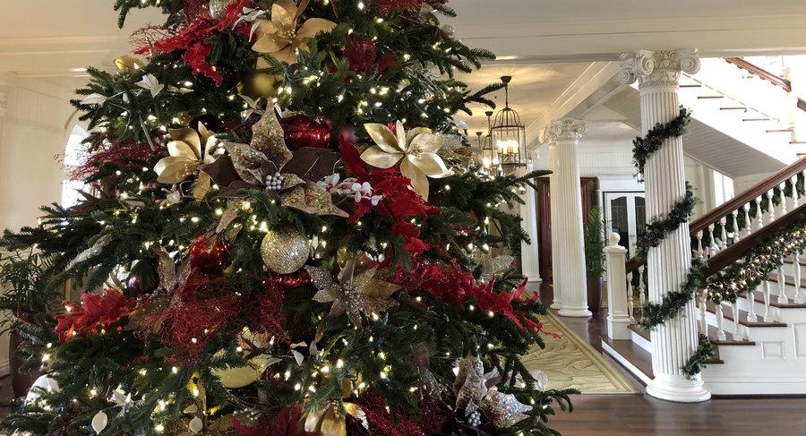 Hawaii Christmas Hotels - Moana Surfrider Lobby